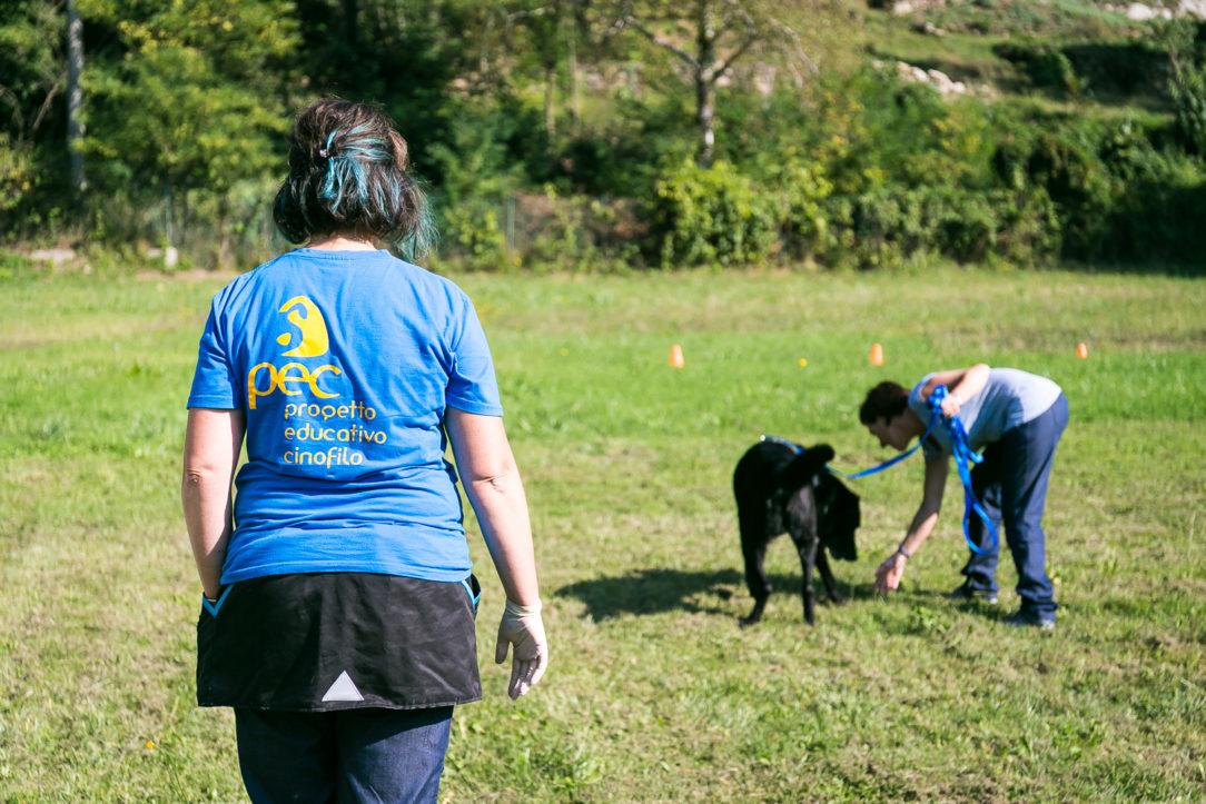 Giochi di naso per cani e cuccioli