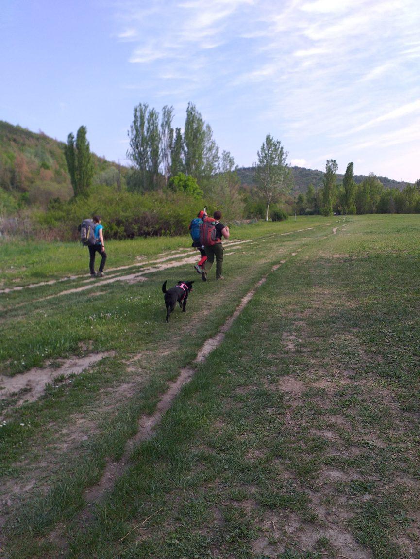 Cammino con il cane via Francigena, Cammino di Oropa con il cane