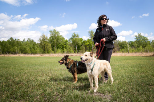 GPS per cani Tractive